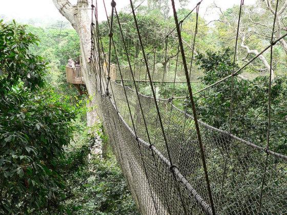 Wikimedia.org nuotr. /Kukumo nacionalinis parkas