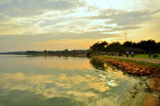 M.Vadišio nuotr./Viktorijos ežero pakrantė Kampaloje