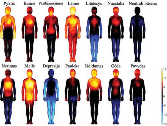 ria.ru nuotr. / Emocijų žemėlapis: kaip jos atsispindi mūsų kūne?
