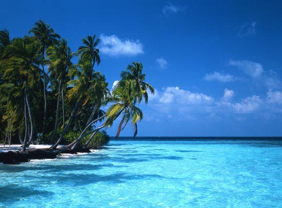 """""""Scanpix"""" nuotr./Maldyvų salos"""