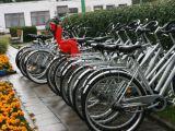 Ðiemet Palangoje pavogta itin daug dviraèiø.