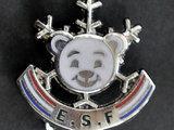 AOP nuotr./Slidinėjimo pradžiamokslio medalis