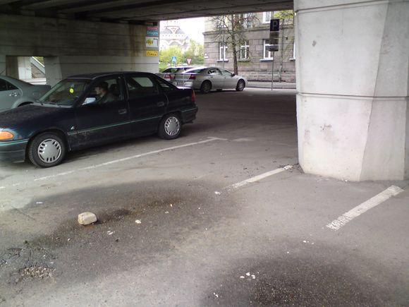 Sauliaus Chadasevičiaus/15min.lt nuotr./`ioje vietoje iatisus metus stovėjęs automobilis iagabentas.