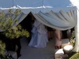 Scanpix nuotr./R.Williamso vestuvių ceremonija