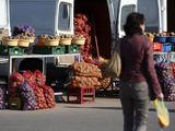 """Eriko Ovčarenko/15min.lt nuotr./Pavasaris šaltas, vasara – karšta ir lietinga – toks """"derinys"""" buvo pražūtingas daliai Lietuvos bulvių augintojų. Kadangi derlius mažesnis, bulvių kainos jau dabar pakilo."""