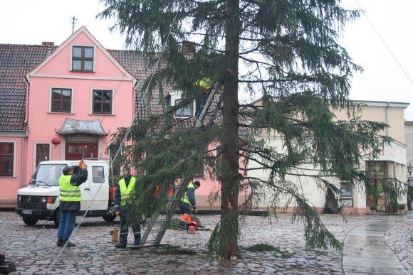 A.Kripaitės/15min.lt nuotr./Klaipėdoje jau puoaiama Kalėdų eglė.