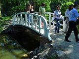 Parke be galybės tvarkymo darbų restauruoti ir tilteliai per tvenkiniį.