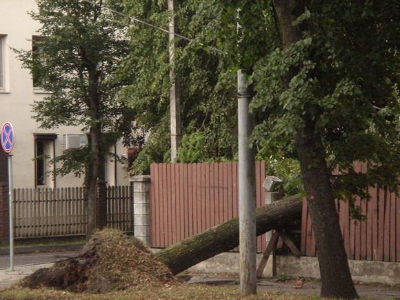 Vilnius po audros