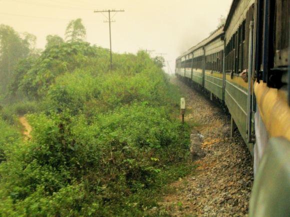 123rf.com nuotr./Traukinys Vietname vinguriuoja per žalius laukus.