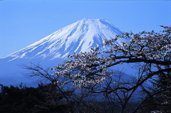 sxc.hu nuotr./Japonija