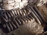 Bauliaus Babilo/PAG-13 nuotr./Gore surinkti sprogmenys