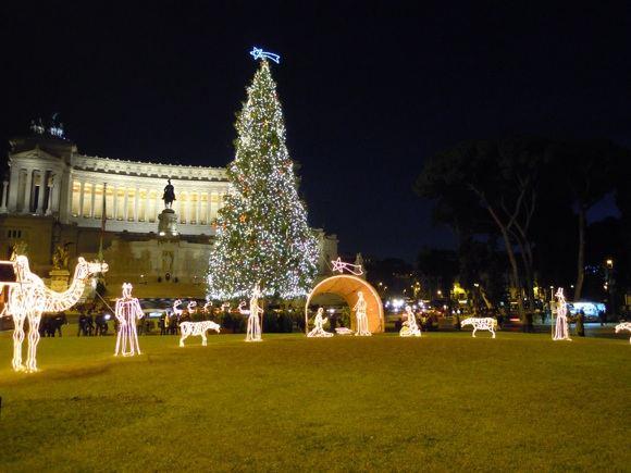 sxc.hu nuotr./Kalėdų eglė Romoje