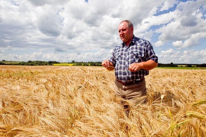 Ūkininkas S.Stirna savo javų lauke.