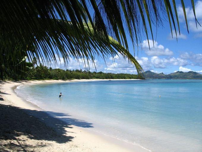 SXC nuotr./Fidžis