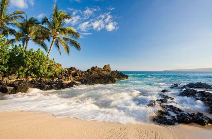 123rf.com nuotr./Maui