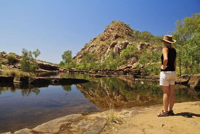 123rf.com nuotr./Australijoje gausu dinozaurų liekanų