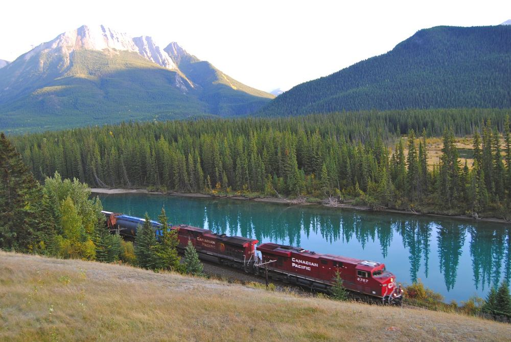 Jaunimo keliones: i�drisk pa�velgti Kanados grizliui i akis ...