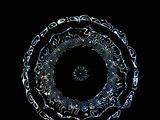 Rūtos Mickienės nuotr./Aqua Lingua: matyk ką girdi. Aqua Ligua garso paveikslas