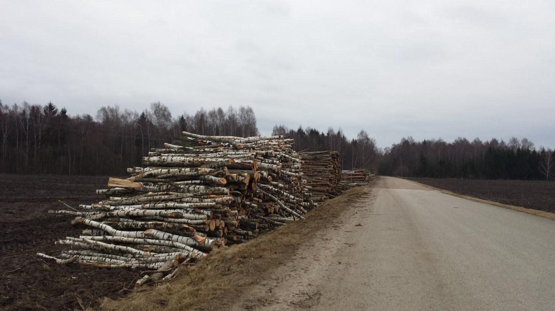 Privačių miškų savininkų asociacija