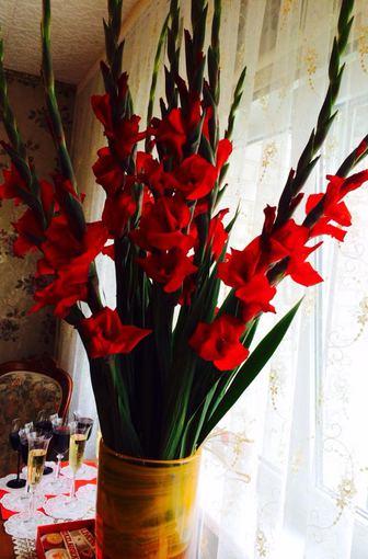Asmeninio albumo nuotr./Ingridos Kazlauskaitės gėlės mamai gimtadienio proga