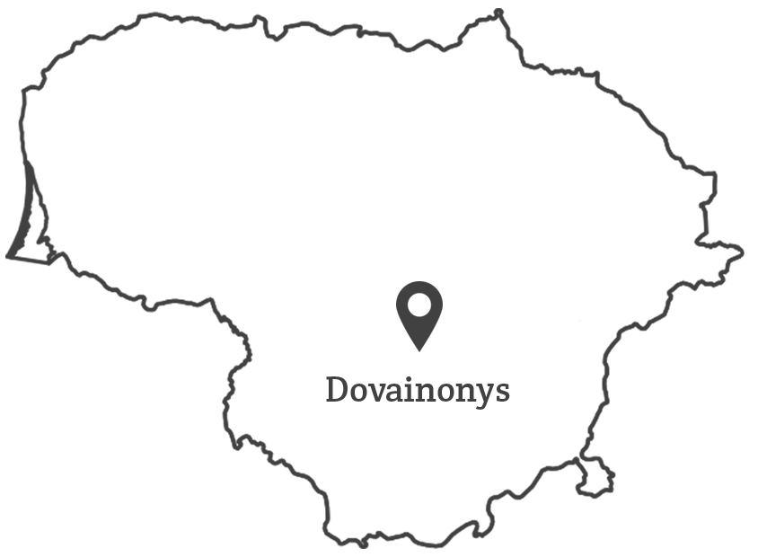 100 lietuvu - Dovainonys map_Grey