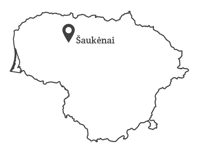 map_grey_saukenai